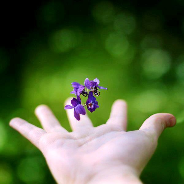Bí quyết sống hạnh phúc: Học cách tha thứ