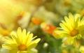 """12 cách giúp đánh thức """"động lực"""" trong bạn"""