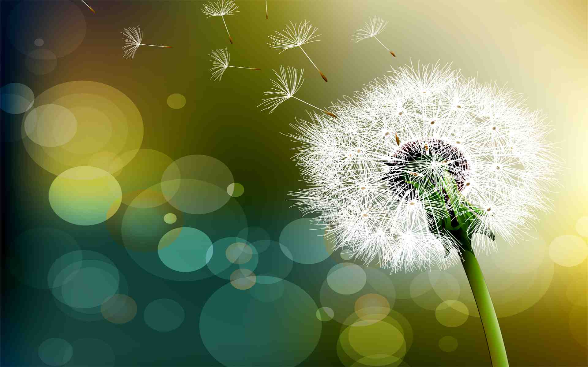 Bí quyết sống hạnh phúc bạn cần phải biết