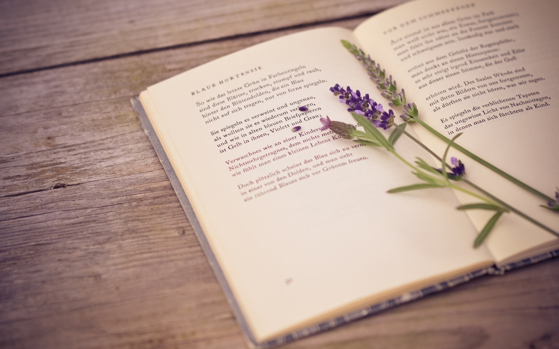 30 cuốn sách truyền cảm hứng và thay đổi cuộc đời bạn (phần 3)