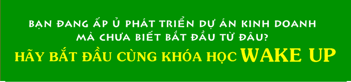 y-tuong-kinh-doanh-doc-dao-pham-ngoc-anh