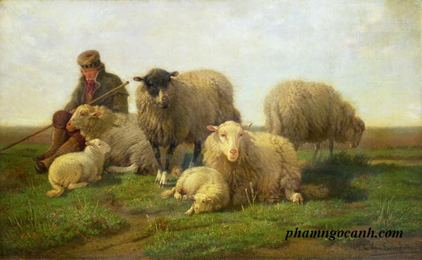 Câu chuyện về hai anh em ăn trộm cừu