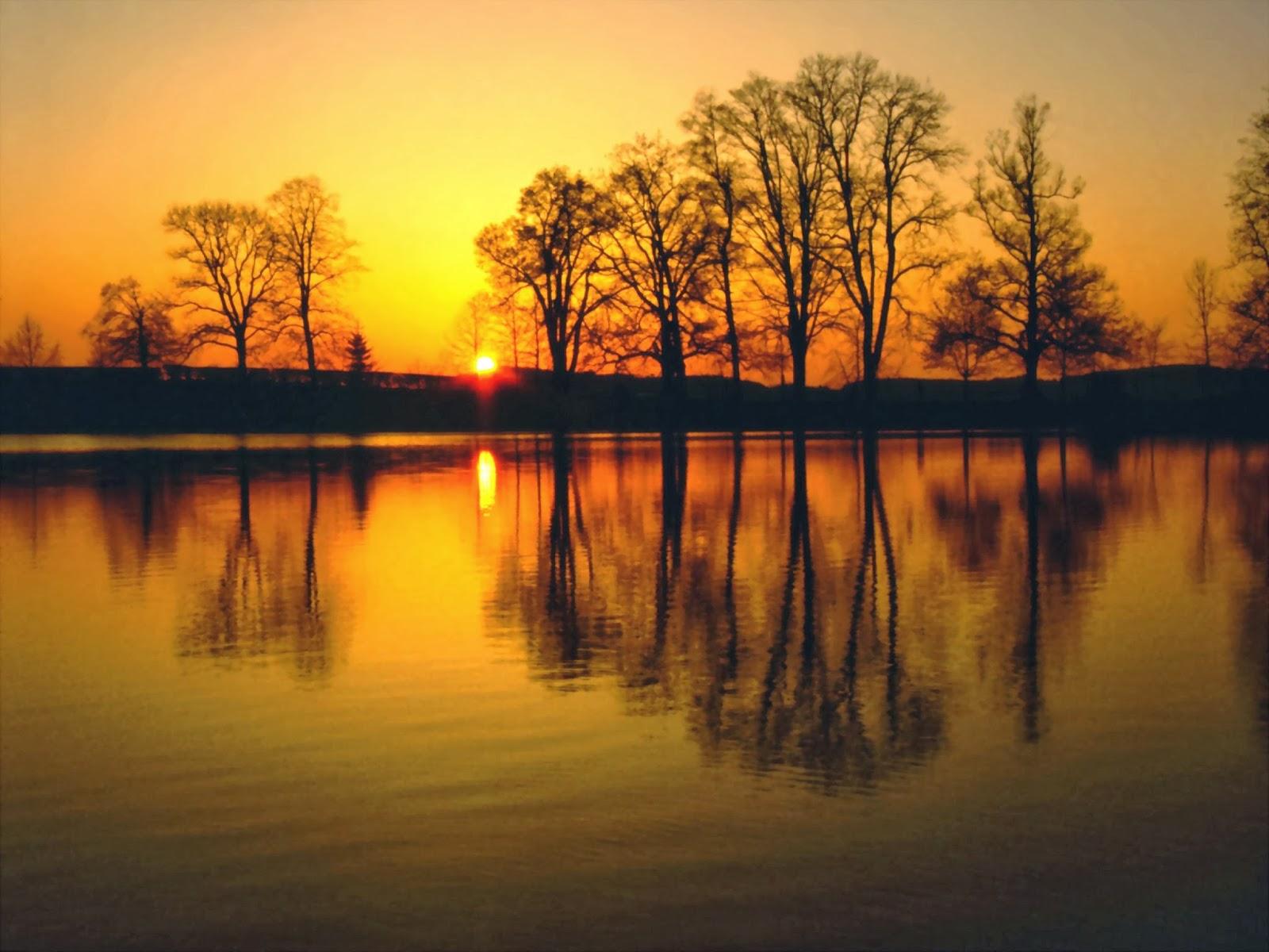 Dù thành công hay thất bại, hãy sống như mặt trời bước qua giông bão và để lại ánh hoàng hôn, dẫu lặn rồi vẫn để lại ráng chiều rực rỡ…