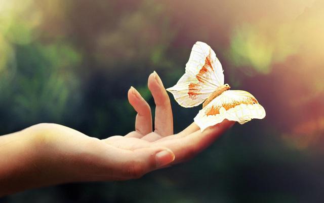 Sống chậm lại chưa hẳn sẽ hạnh phúc: Hãy cứ tất bật, vội vã rồi những điều tốt đẹp nhất sẽ đến bên bạn