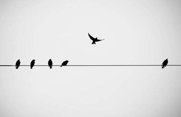 """4 chữ """"đừng"""" để an yên giữa dòng đời tấp nập: Đừng sống vội, đừng kỳ vọng, đừng quá coi trọng và đừng nói nhiều làm ít"""
