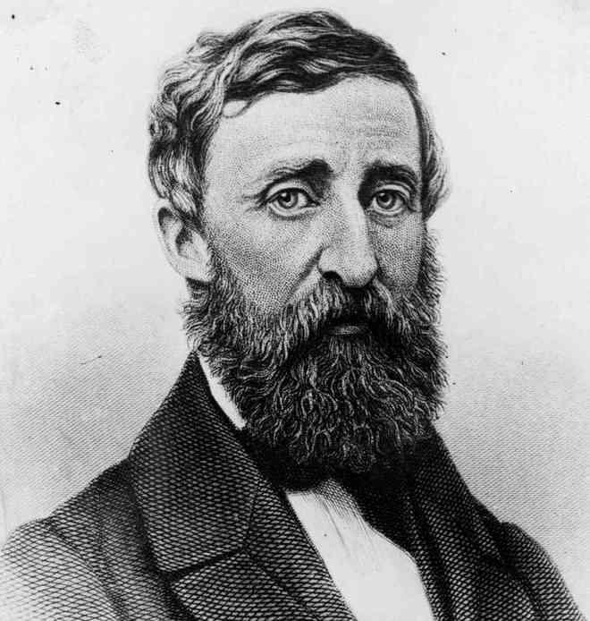 13-Henry-David-Thoreau-1399542903_660x0