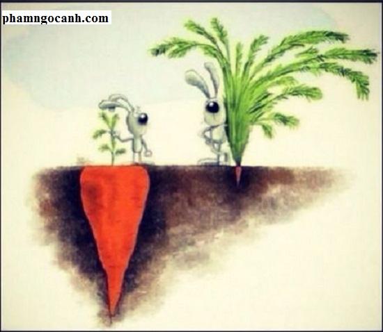 Bài học thành công: Không bao giờ từ bỏ mục tiêu