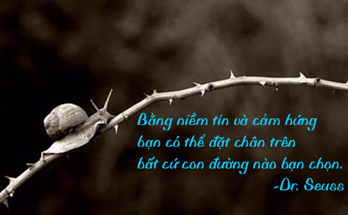 dinh-luat-cuoc-song6