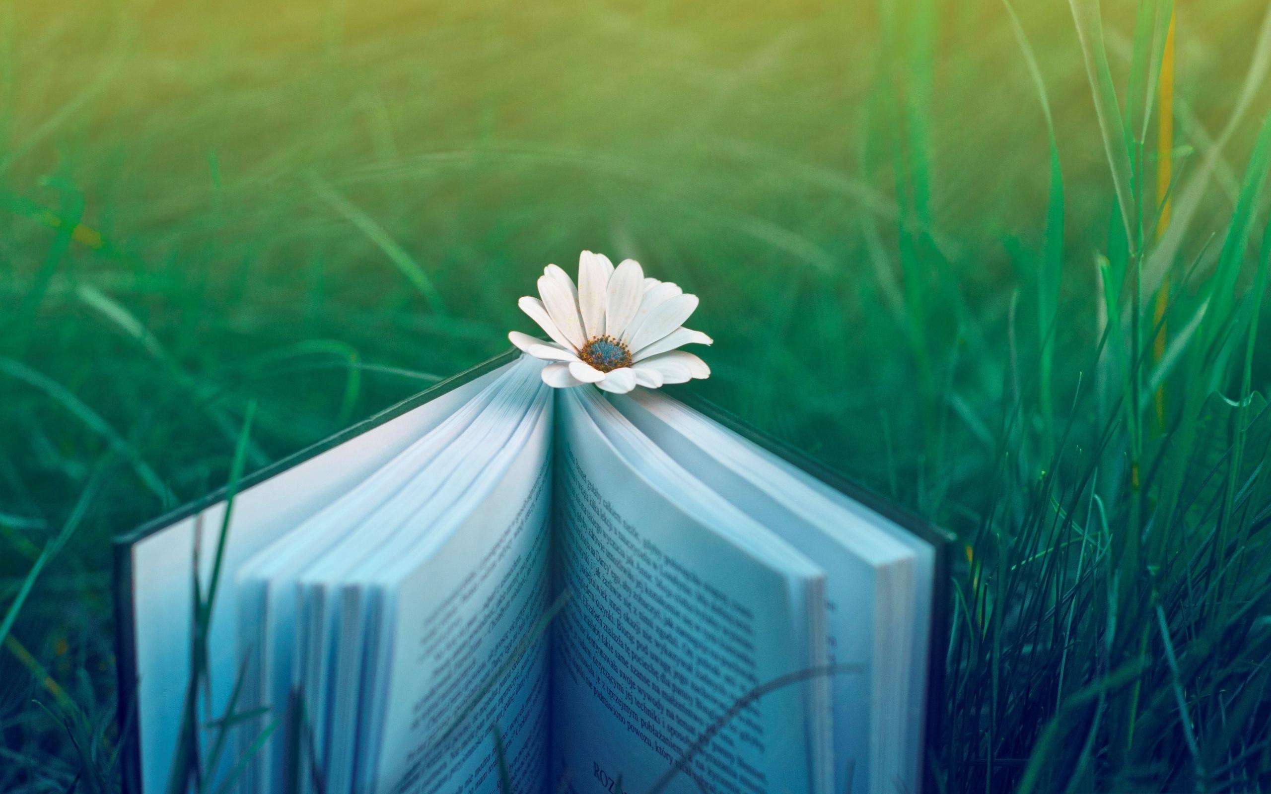 30 cuốn sách truyền cảm hứng và thay đổi cuộc đời bạn (phần 1)