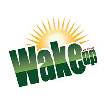 Trailer khóa học Wake up