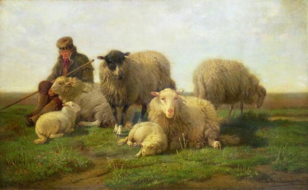 Lòng vị tha từ bài học ăn trộm cừu