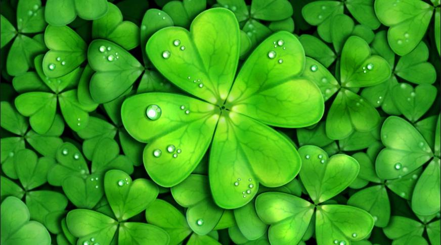 12 bí mật về sự may mắn