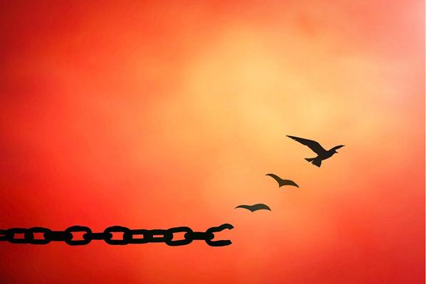 Tại sao ta phải học cách để tha thứ?