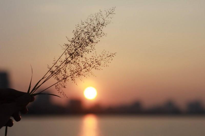 Công việc cũng như tình yêu: Từ bỏ thứ không nên từ bỏ là thiếu hiểu biết, không chịu từ bỏ thứ nên từ bỏ là cố chấp